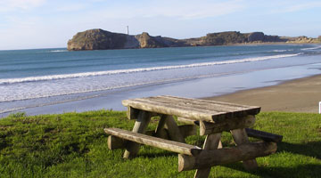 Castlepoint Holiday Park - Camp Sites