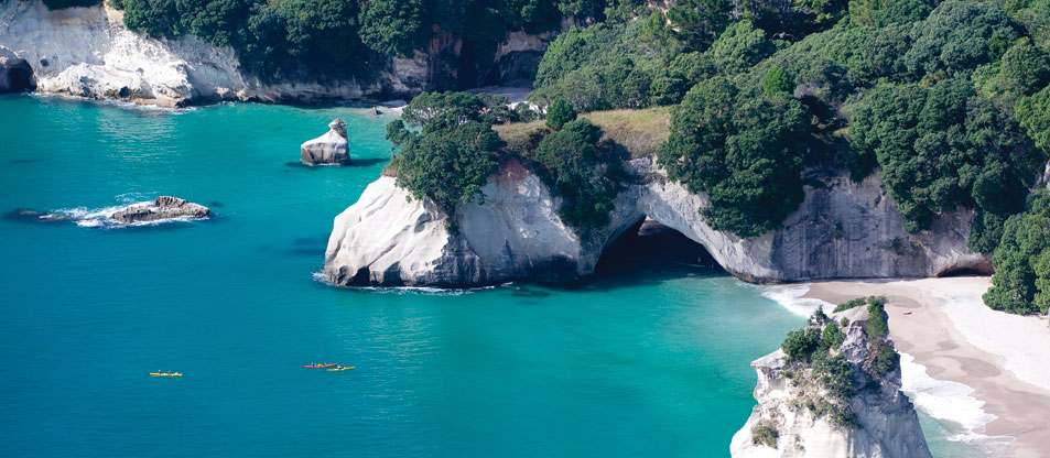 Visit Cathedral Cove with Coromandel Adventures for the ultimate kiwi experience