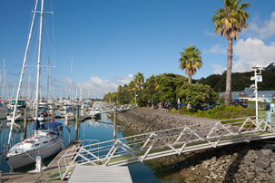 Gulf Harbour Marina offers a full range of berth options