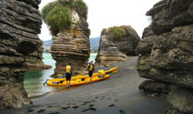 Local Kayaking adventures in Raglan