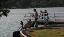 Fishing on the Raglan Wharf