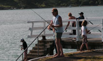 Fishing off the Raglan Wharf