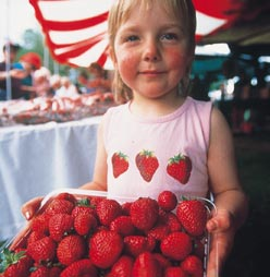 Waimate Strawberry Fare - Waimate District Council
