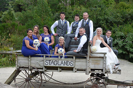 Host your Wellington wedding at Staglands Wildlife Park