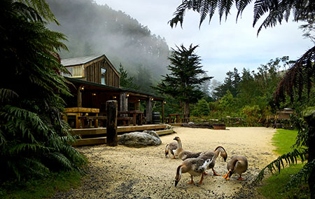 Make your wedding special at Staglands Wildlife park in upper hutt wellington