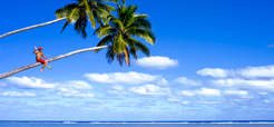 cook-islands-tourism-accreditation-scheme