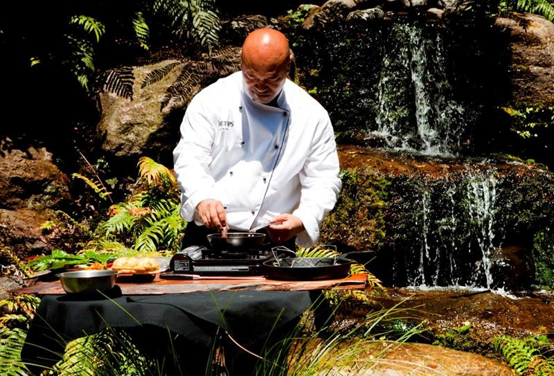 Wild food cooking experience with Maori cuisine chef