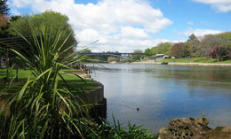 Enjoy a river cruise along the Waikato River